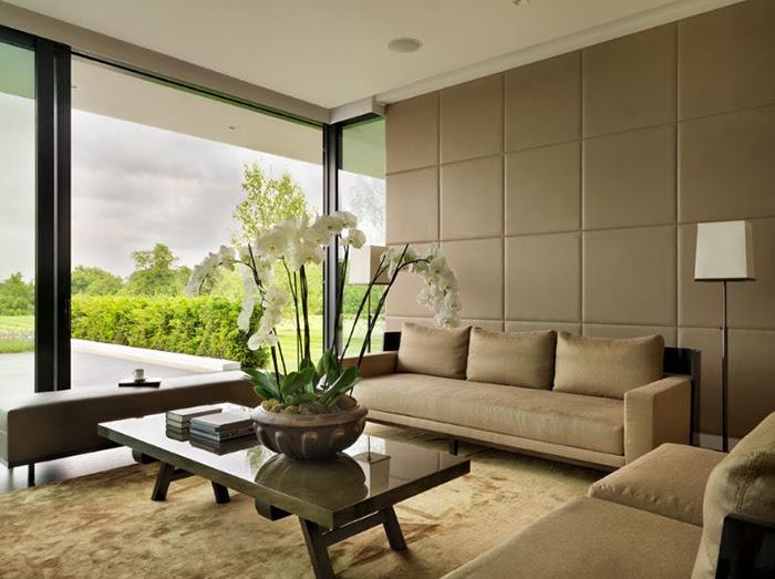 Считается, что орхидеи в гостиной привносят хорошее в дом