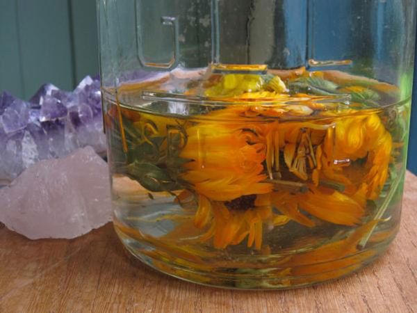 Спиртовой раствор календулы для орхидей