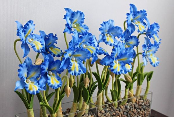 Синяя орхидея не является натуральной