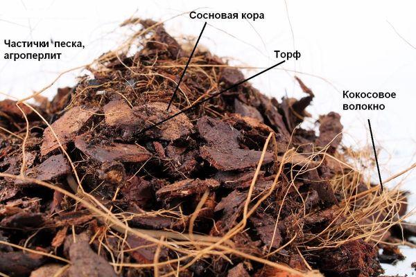 Сосновая кора - основной компонент для эпифитных орхидей