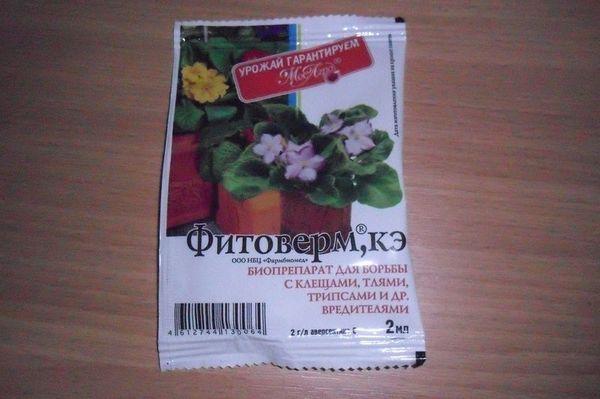 «Фитоверм» поможет избавить орхидею от вредителей