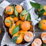 Вырастить мандарин сможет даже начинающий цветовод