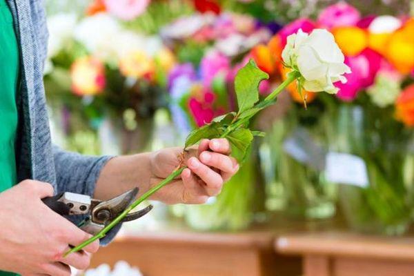 Подготовка цветов – очень важная процедура