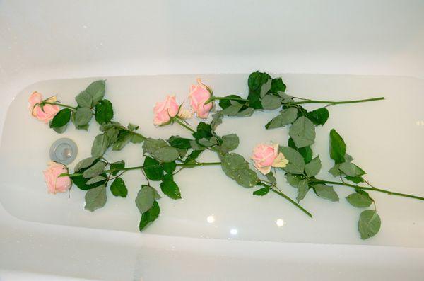 Холодная ванна вернет цветы к жизни