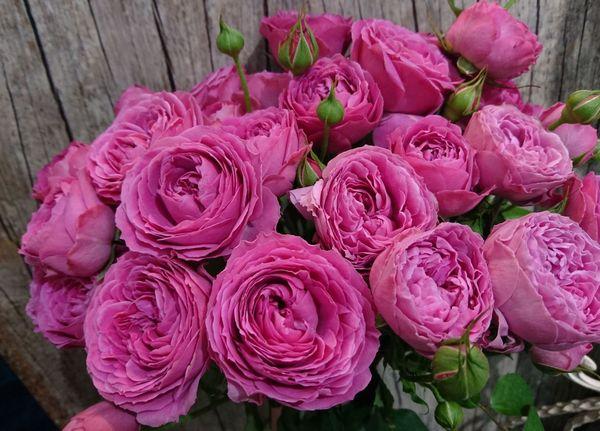В состав букета входит от 9 до 30 цветов