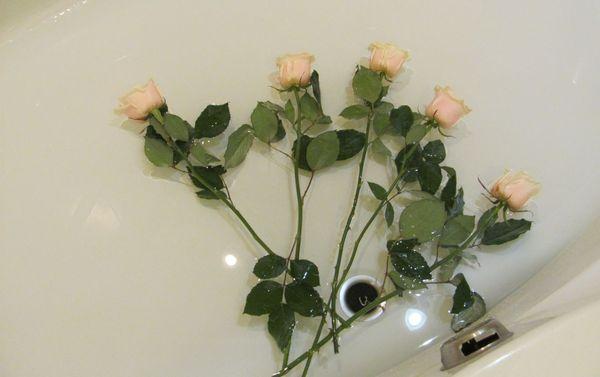 Розы восстанавливаются в холодной воде