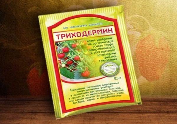 Триходермин препарат от заболеваний