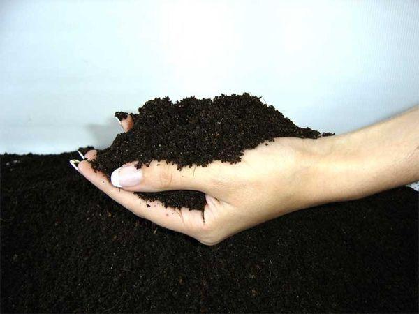 Органические смеси - лучшее удобрение
