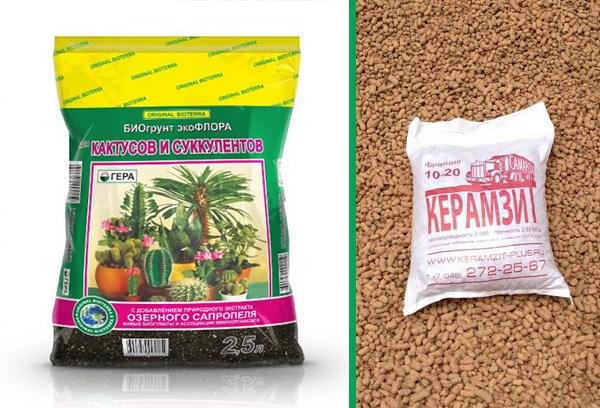 Используйте специальную почвосмесь для сукулентов и керамзит