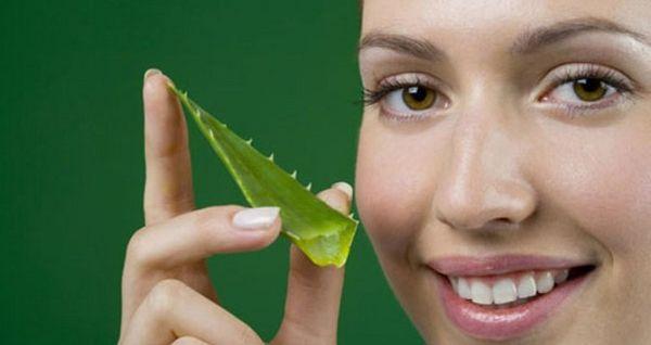 Алоэ положительно влияет на кожу лица