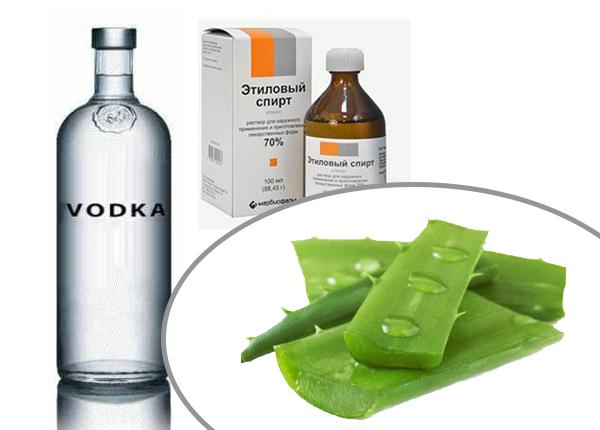 Простой рецепт настойки со спиртом или водкой