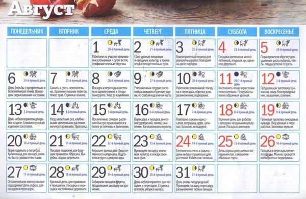 Лунный календарь огородника садовода на август 2018
