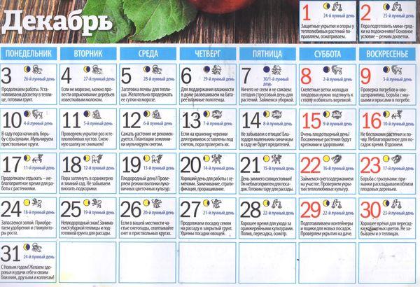 Лунный календарь садовода огородника на декабрь 2018