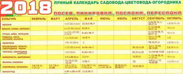 Работы в огороде на Урале 2018