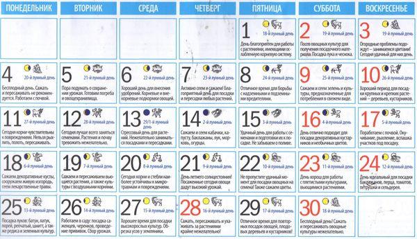 Лунный календарь садовода огородника на июнь 2018